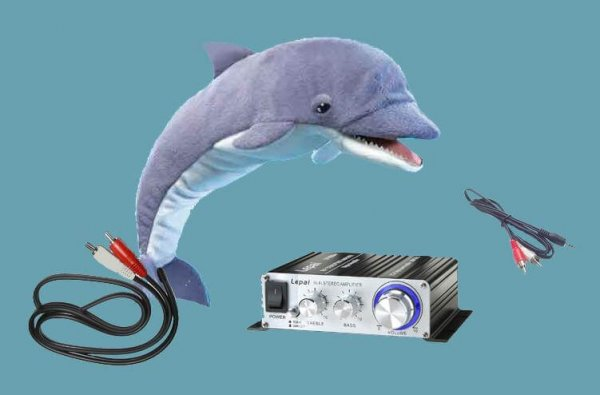 VibraSound_Music_Dolphin_1024x10241.jpg